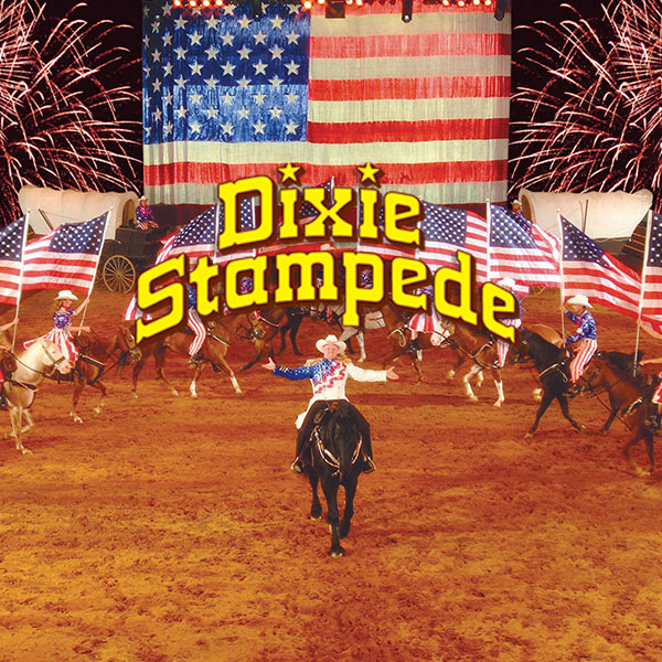 Discount Dixie Stampede Travel Pacakge